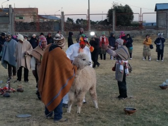 Animal sacrifice (Llama) for the New Year of the Incan calendar.